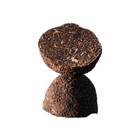 Winter Truffle Tuber Melanosporum